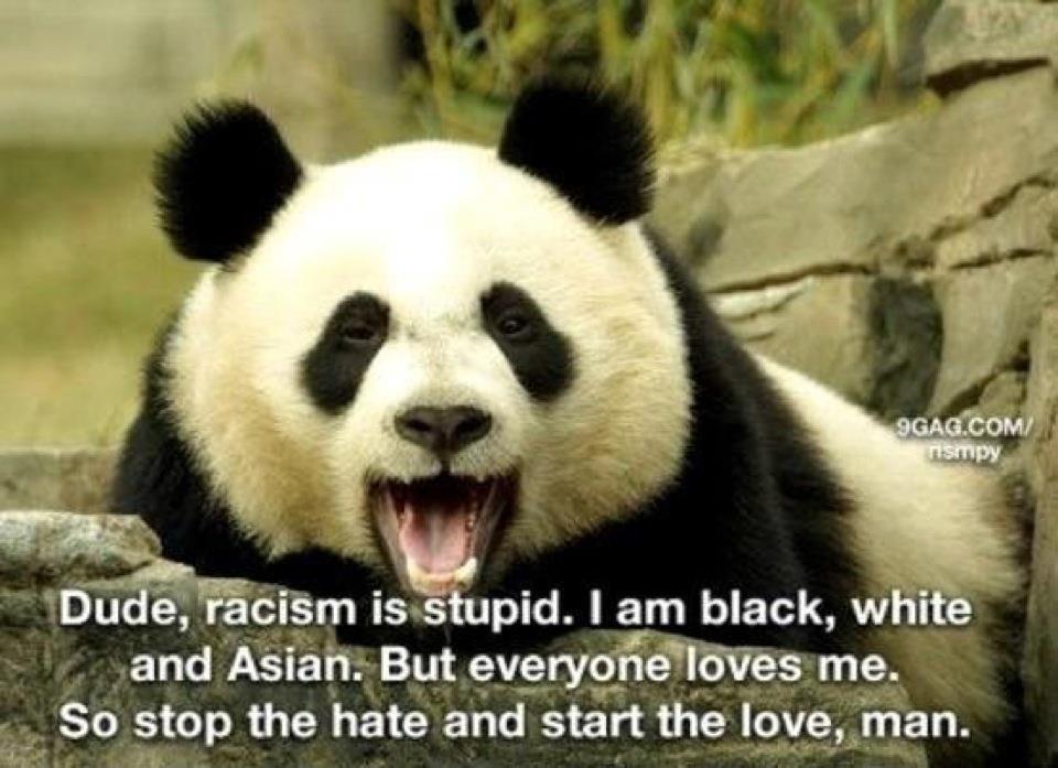 """""""חברים, גזענות היא טיפשית. אני שחור, לבן ואסייתי. אבל כולם אוהבים אותי. אז תפסיקו לשנוא ותתחילו לאהוב."""""""