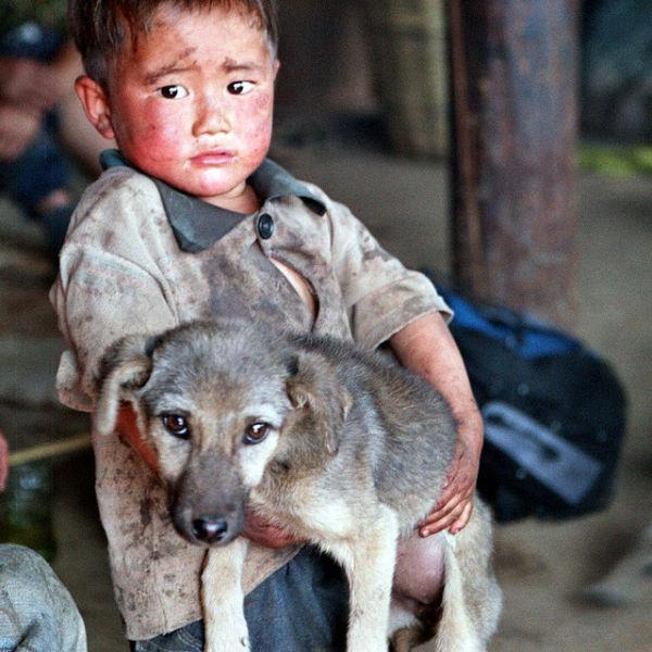 """""""כלב הוא היצור היחיד בעולם שאוהב אותך יותר ממה שאתה אוהב את עצמך."""""""
