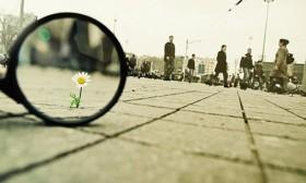 """""""תהנה מהדברים הקטנים בחיים, כי יום אחד תסתכל לאחור ותגלה שהם היו הדברים הגדולים."""""""